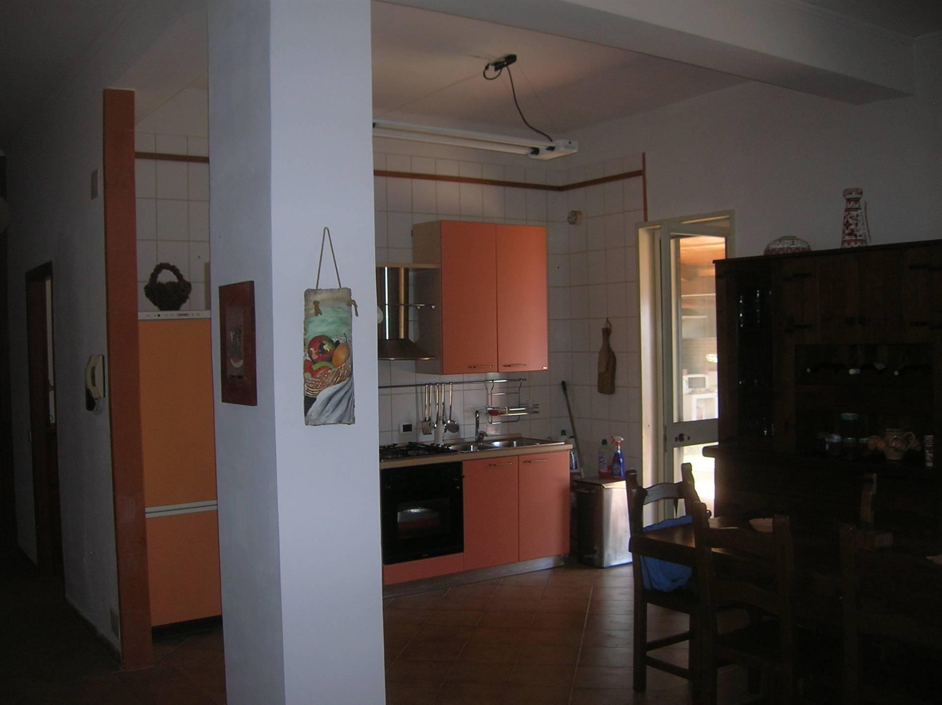 Foto zona cucina p.t.