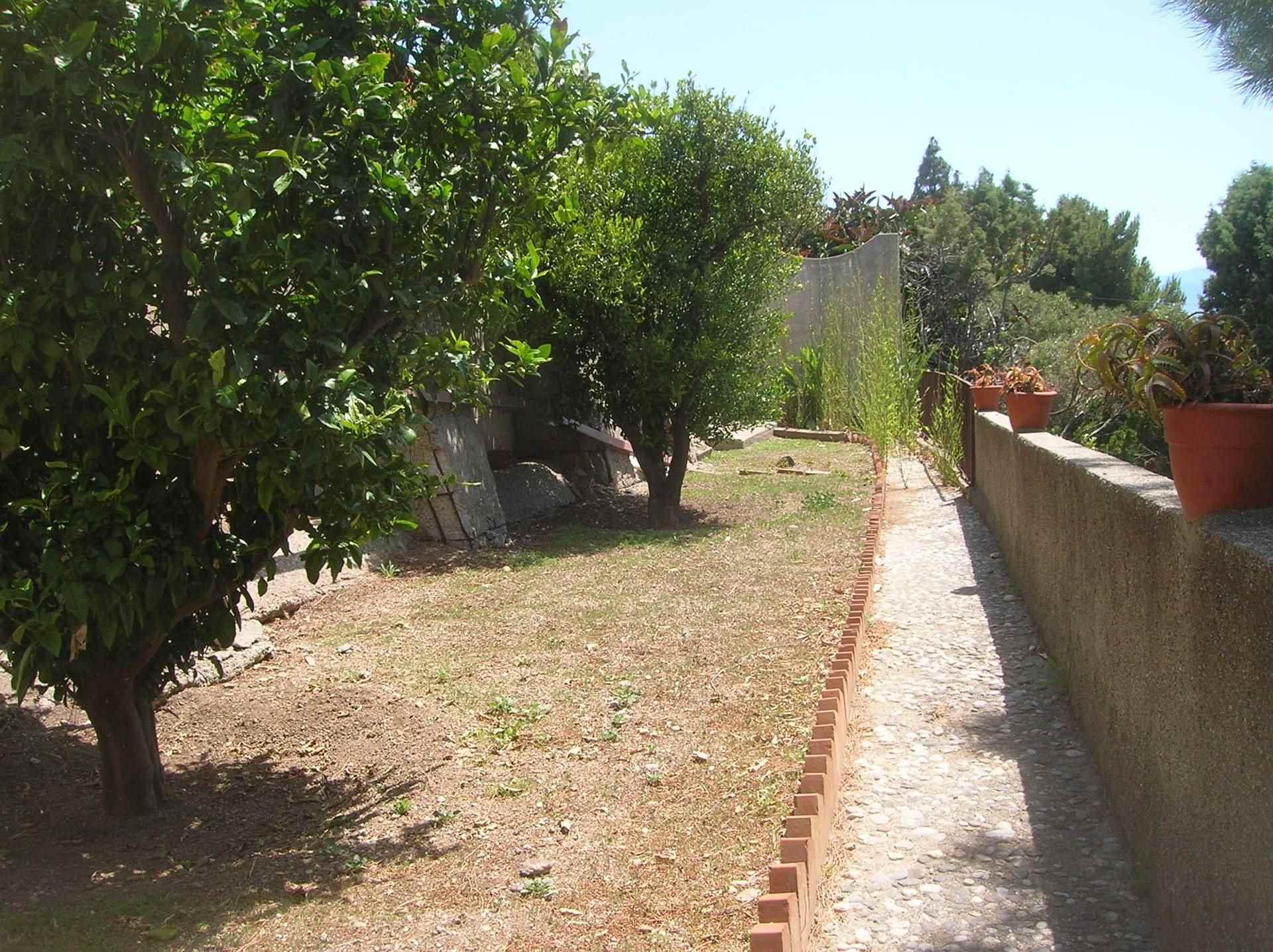 Foto giardino