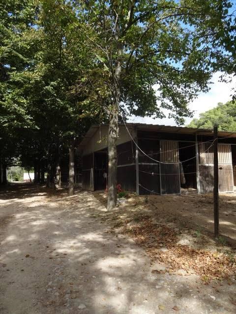 Azienda Agricola in vendita a Dolceacqua, 1 locali, Trattative riservate | PortaleAgenzieImmobiliari.it