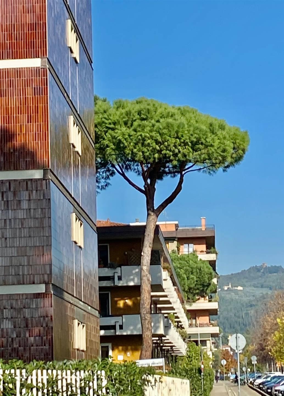 Attico / Mansarda in vendita a Firenze, 5 locali, zona Settignano, Coverciano, prezzo € 630.000   PortaleAgenzieImmobiliari.it
