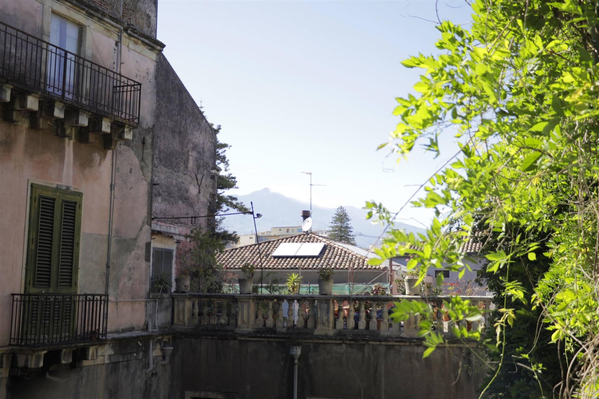 Vista Etna dal Salone