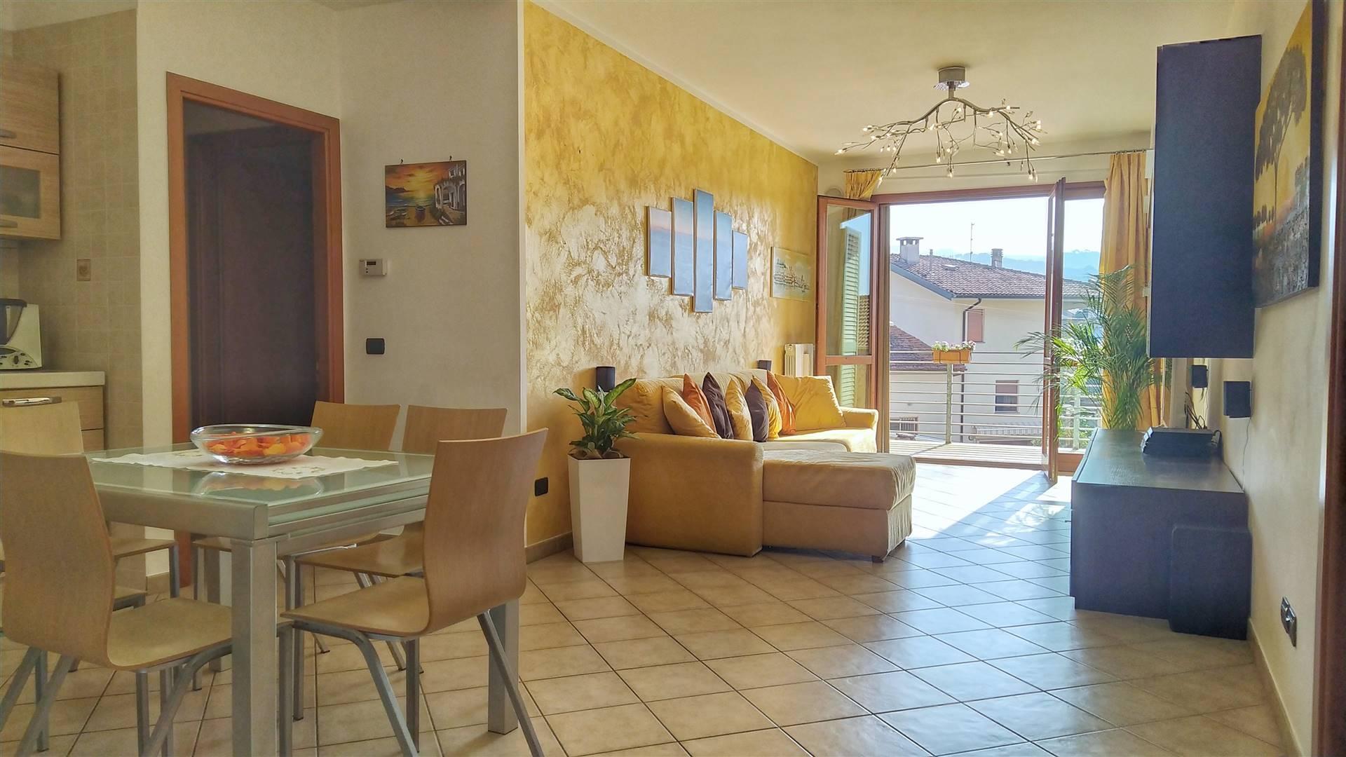 MONSUMMANO TERME, Appartamento in vendita, Buone condizioni, Riscaldamento Autonomo, posto al piano 1° su 3, composto da: 3 Vani, Cucina a vista, 2